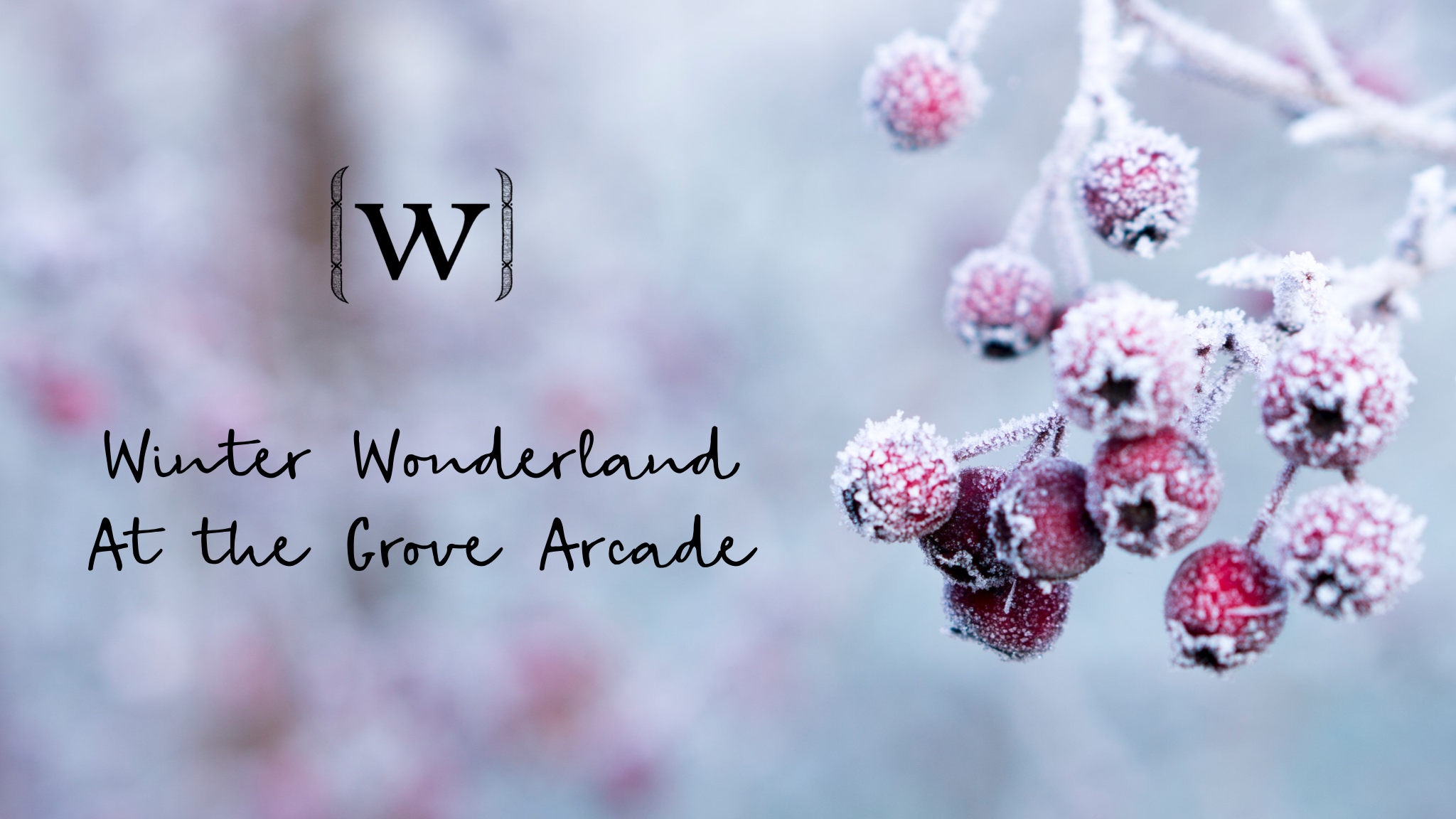 Winter Wonderland at the Grove Arcade